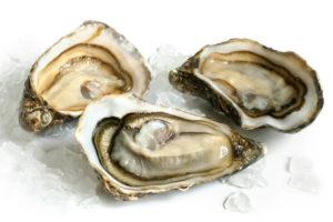 ostras no gelo - Alimento que Aumenta a Imunidade